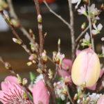 桜アレンジ で日本の春をお家でももっと楽しもう♡
