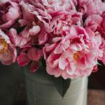 写真で 花の名前 がわかるアプリでインスタ映えする花束を分析♡